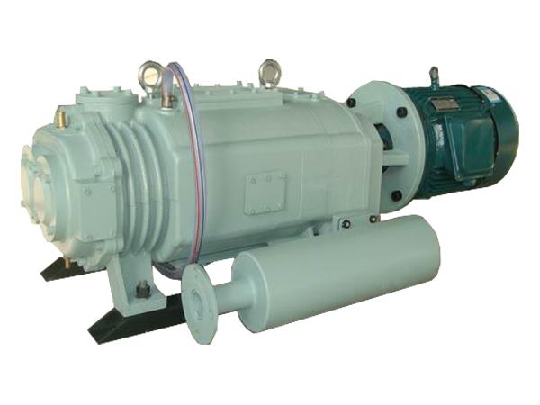 威海智德研发的新型干式螺杆真空泵实现了国内该产品零的突破