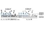低温泵的原理与结构