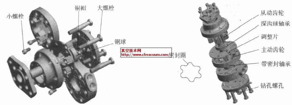 异形齿轮泵结构