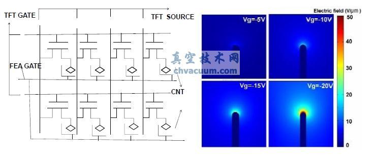 (a)amfed 的基本结构(b)tft 栅压对尖端放电影响的模拟