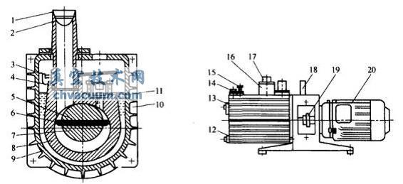 直联式真空泵结构示意图