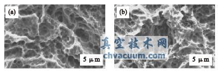 等离子体氧化处理前(a)、后(b)样品表面的SEM 相片