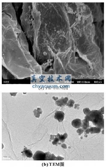 微米结构cu /氧化石墨烯复合微粒的fe-sem